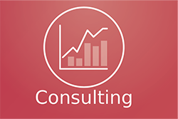 Solution for Consulting Agency